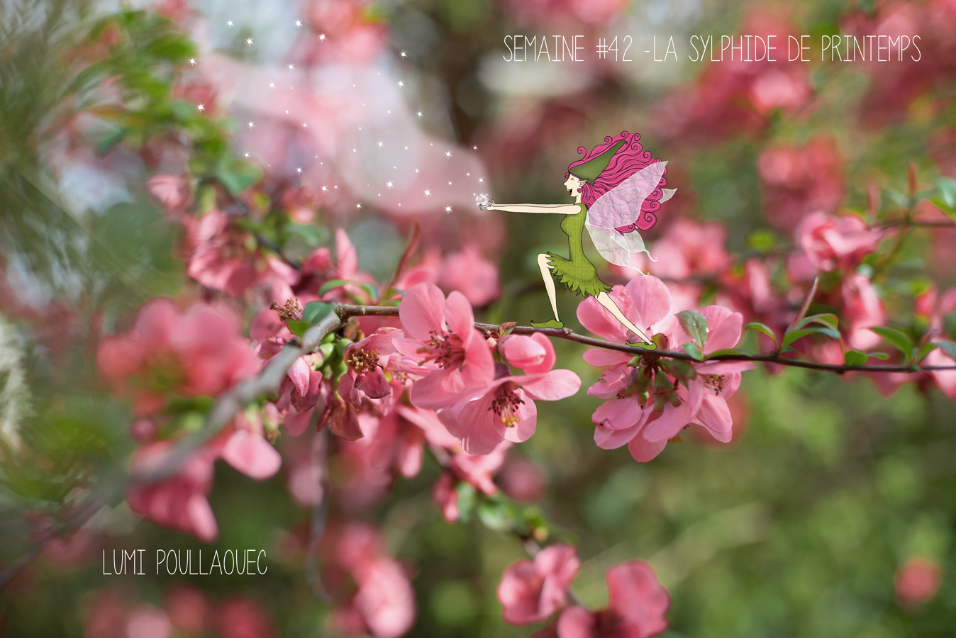 ©LumiPoullaouec-Sylphide-printemps