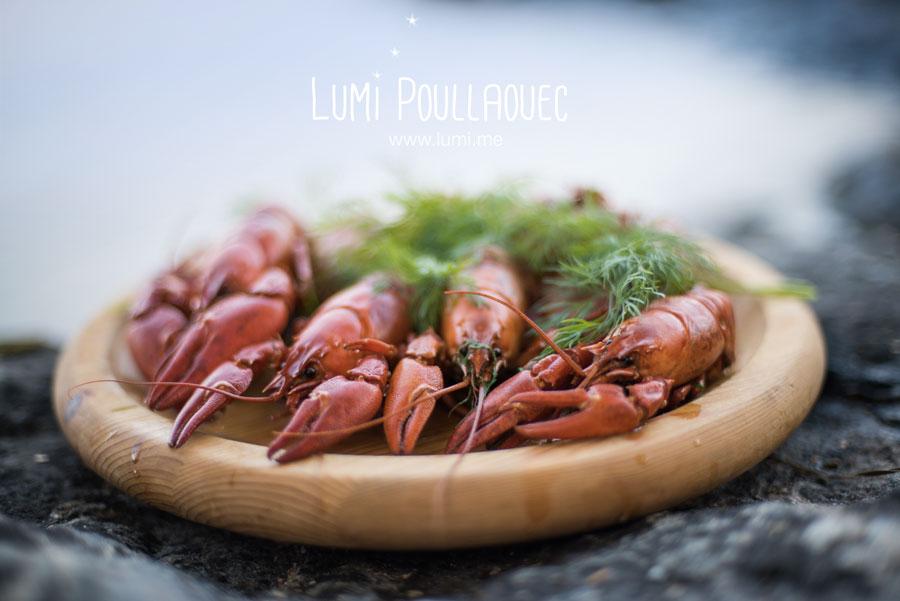 finlande-lumi-poullaouec-photographies-20