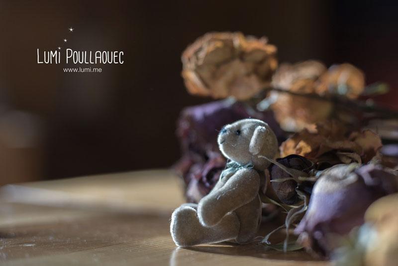 finlande-lumi-poullaouec-photographies-8