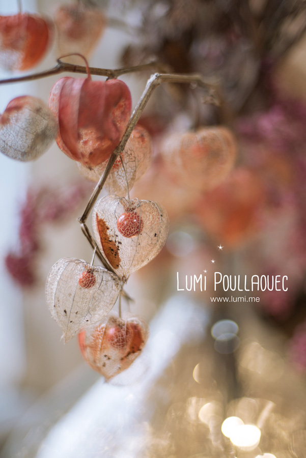 LumiPoullaouec-8