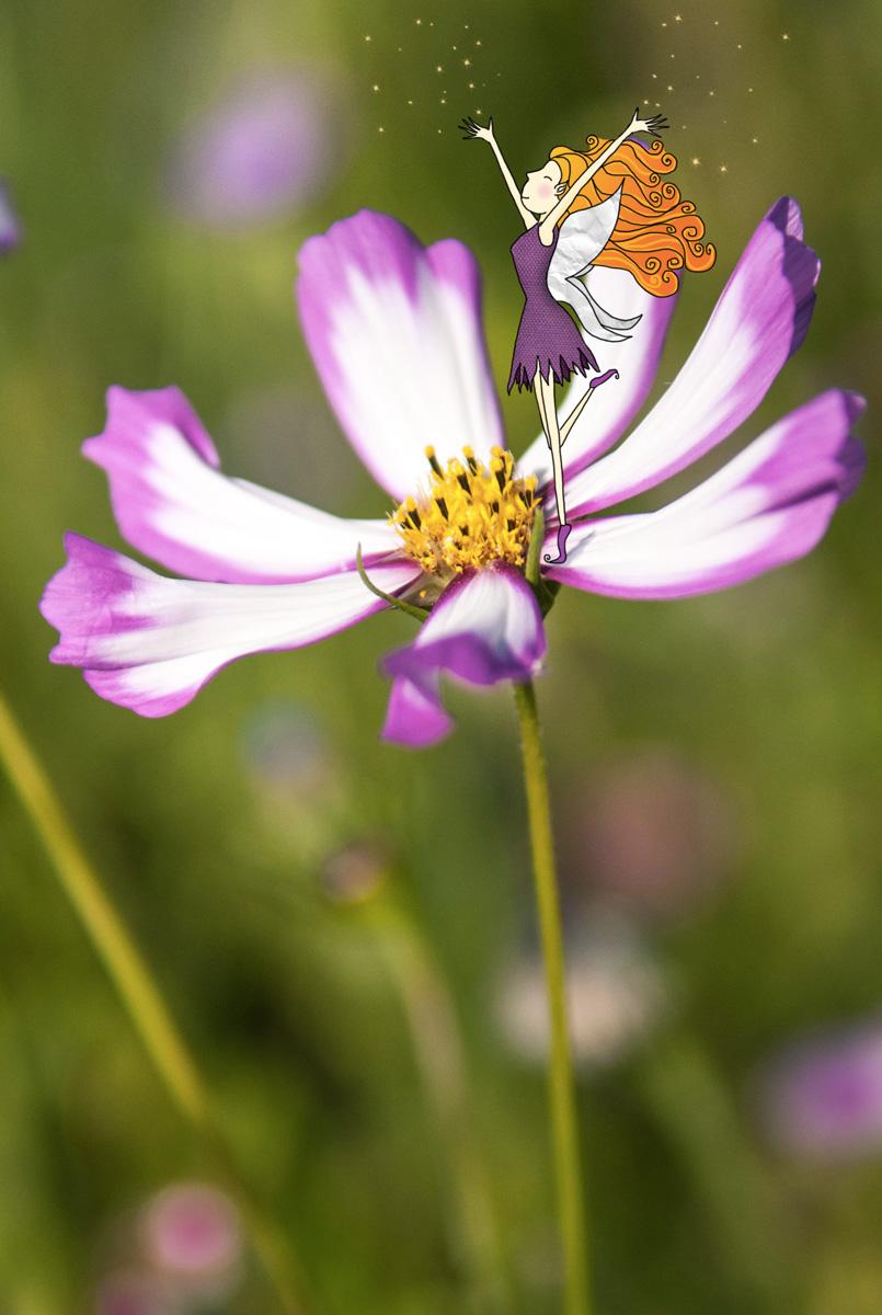 La fée Pollen  (Projet 52)